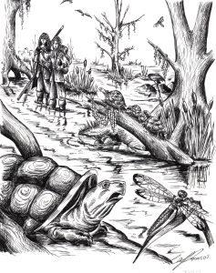 interior Swamp 237x300